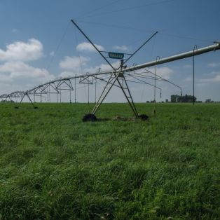 field irrigation